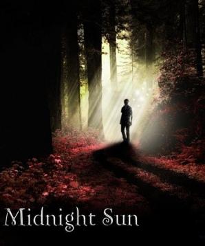 midnightsunkapakları (6)